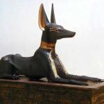 анубис в образе собаки