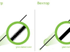 Отличия растровой графики от векторной
